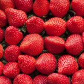 Fresh ripe perfect strawberry  — Stock Photo