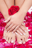Beautiful woman's hands and legs with red rose petals — Stock Photo