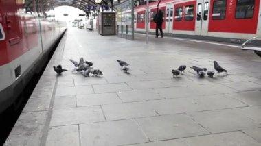 Passsengers on the railroad station platform — Video Stock