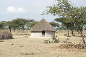 Homes, Great Rift Valley, Ethiopia, Africa — Stock Photo
