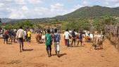 Cattle market, Key Afer, Ethiopia, Africa — Zdjęcie stockowe