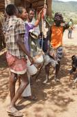 Cattle market, Key Afer, Ethiopia, Africa — Stock Photo