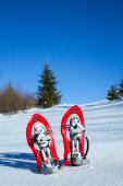 Snowshoeing in Carpathian mountains in wintertime — Stock Photo
