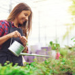 Young nursery owner watering potted plants — Stock Photo #82159212