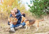 Father with son playing with dog — Stock Photo