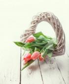 Tulipes roses tendres — Photo