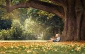Little boy reading book under  tree — Stock Photo