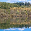 Water reflection - lake Liptovska Mara, Slovakia — Stock Photo #55867537