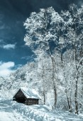 Small shelter at country — Stock Photo