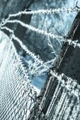 Hoarfrost on mesh — Stock Photo