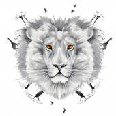 Lion king of beasts in the jungle. — Stock Vector