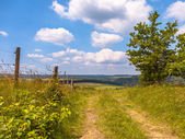 Walking trail on a Hill in a Green Summer Landscape — Stock Photo
