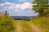 Walking trail on a Hill in a Green Summer Landscape — Stockfoto