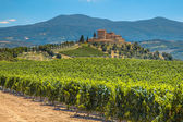 Castle overseeing Vineyard in Rows at a Tuscany Winery Estate, I — Stock fotografie