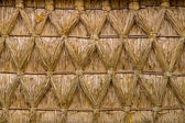 Intertwined Thatched Reed on on a Cottage — Стоковое фото