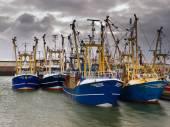 Modern fishing fleet — Stock Photo