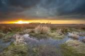 Threatening dark sky over swamp area during sunset — Stock Photo