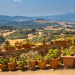 View over Tuscany Landscape with Pots of Flowers along the Balus — Stock Photo #66380189