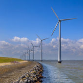 Row of wind turbines along a breakwater — Stock Photo