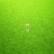 Conceptual light bulb on green grass background — Stock Photo #71058523