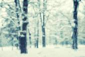 Blurry and rainy view of snowy park — Stock Photo