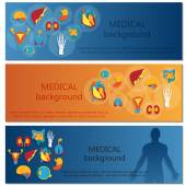 Concept of web banner. Medical background.Human anatomy. — Stock Vector