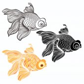 Zlaté rybky ilustrace — Stock vektor