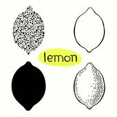 Hand drawn lemons — Stock Vector