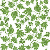 Seamless pattern with parsley — Stock Vector
