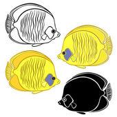 Sketch Fish illustration — Stock Vector