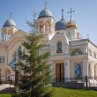 Holy Cross Cathedral Man's Piously-Nikolaev monastery — Stock Photo #52382333