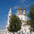 Holy Trinity Cathedral and White Kremlin — Stock Photo #52382455