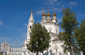Holy Trinity Cathedral and White Kremlin — Stock Photo