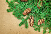 Coniferous branches and cones on wooden background — Stock Photo