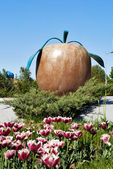 Statue apple on the street in Almaty — Stock Photo