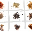 Set of different spices — Stock Photo #67753509