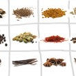 Set of different spices — Stock Photo #67753539