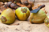 Coconuts with  knife — Stock Photo