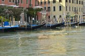 Gondolas parked — Stock Photo