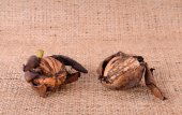 Walnuts closeup on the sackcloth — Stock Photo
