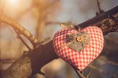 Kształt serca — Zdjęcie stockowe