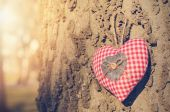 Heart shaped hanging — Stock Photo