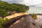 Bako National Park landscape — Stock Photo