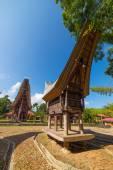 Traditional Toraja village — Stock Photo