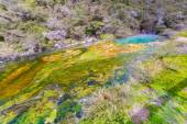 Colorful hot spring — Stock Photo
