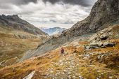 Hiking in the italian Alps — Stock Photo