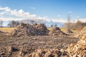 Biomass from lumber industry discards — Stock Photo