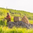 Rural life and farmland in Indonesia — Stock Photo #70509147