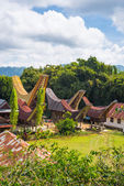 Traditional Toraja village in idyllic landscape — Stock Photo