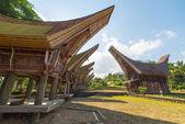 Scenic traditional village in Tana Toraja — Stock Photo
